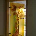 Drzwi szklane SPA
